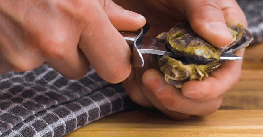HiCoup Oyster Shucking Knife & Glove